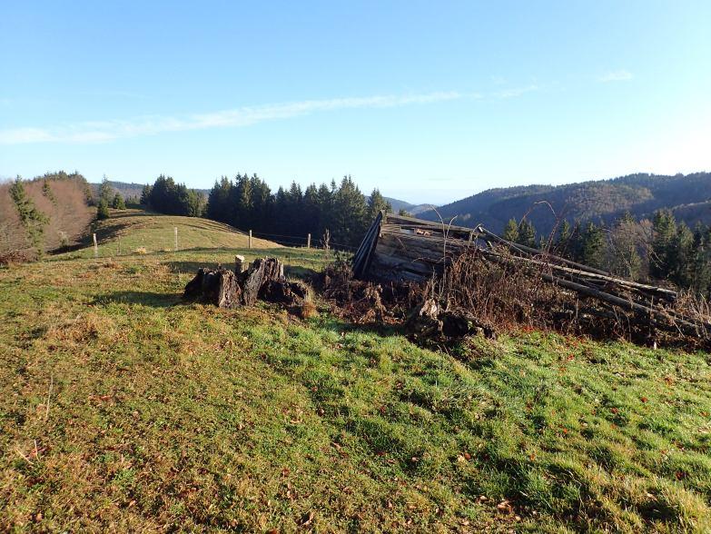 Foto: Manfred Karl / Wandertour / Widhag und Richtberg / 16.10.2020 07:22:52