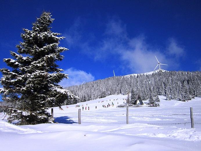 Foto: Andreas Koller / Schneeschuhtour / Weinebene Schneeschuhtour auf zwei Gipfel (1853m) / Zauberhafte Winterlandschaft Weinebene / 04.01.2021 21:58:38