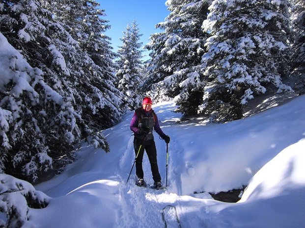 Foto: Andreas Koller / Schneeschuhtour / Weinebene Schneeschuhtour auf zwei Gipfel (1853m) / 04.01.2021 21:58:02