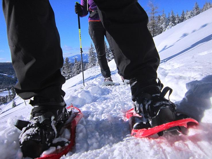 Foto: Andreas Koller / Schneeschuhtour / Weinebene Schneeschuhtour auf zwei Gipfel (1853m) / 04.01.2021 21:57:31