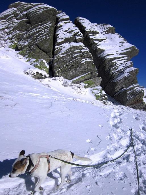 Foto: Andreas Koller / Schneeschuhtour / Weinebene Schneeschuhtour auf zwei Gipfel (1853m) / 04.01.2021 21:57:02