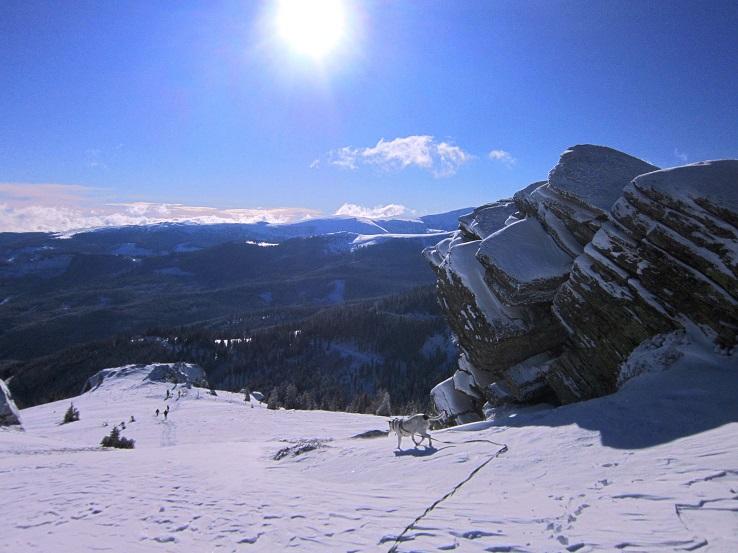Foto: Andreas Koller / Schneeschuhtour / Weinebene Schneeschuhtour auf zwei Gipfel (1853m) / 04.01.2021 21:56:56