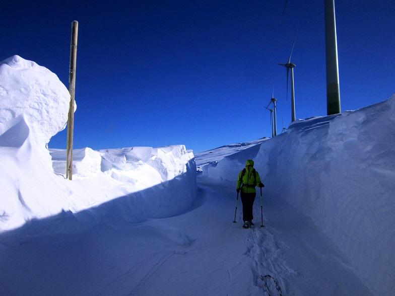 Foto: Andreas Koller / Schneeschuhtour / Weinebene Schneeschuhtour auf zwei Gipfel (1853m) / 04.01.2021 21:54:01