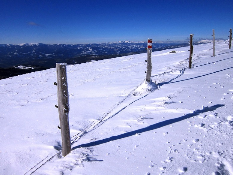 Foto: Andreas Koller / Schneeschuhtour / Weinebene Schneeschuhtour auf zwei Gipfel (1853m) / 04.01.2021 21:53:32