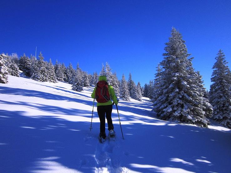 Foto: Andreas Koller / Schneeschuhtour / Weinebene Schneeschuhtour auf zwei Gipfel (1853m) / 04.01.2021 21:51:40