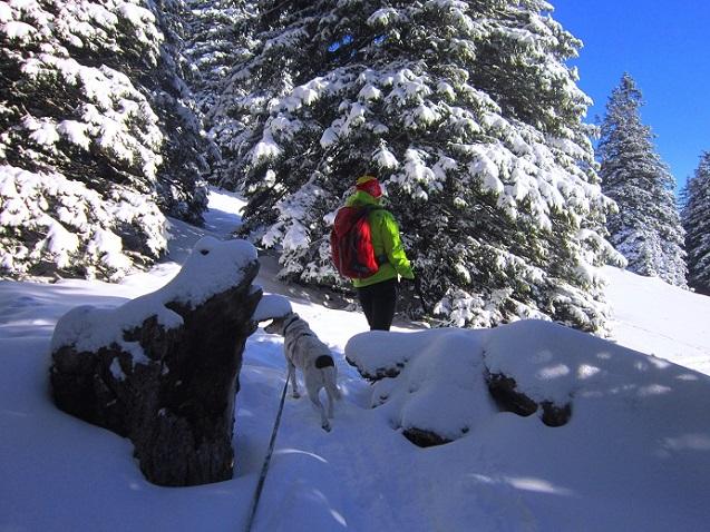 Foto: Andreas Koller / Schneeschuhtour / Weinebene Schneeschuhtour auf zwei Gipfel (1853m) / 04.01.2021 21:51:20