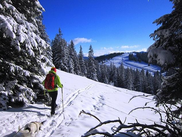 Foto: Andreas Koller / Schneeschuhtour / Weinebene Schneeschuhtour auf zwei Gipfel (1853m) / 04.01.2021 21:51:13