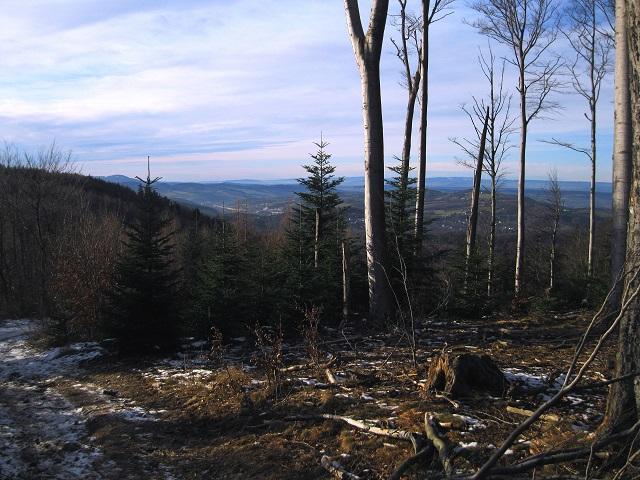 Foto: Andreas Koller / Wandertour / WIR - Runde über den Jochgrabenberg (645m) / 10.01.2021 23:39:44