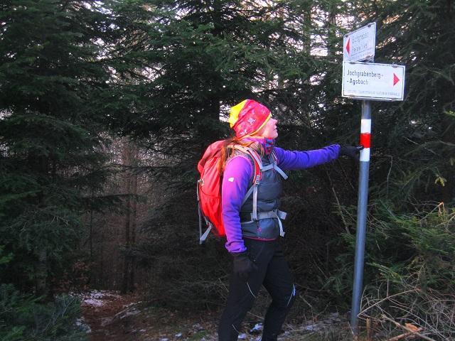 Foto: Andreas Koller / Wandertour / WIR - Runde über den Jochgrabenberg (645m) / Abzweigung / 10.01.2021 23:39:28