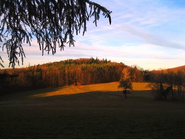 Foto: Andreas Koller / Wandertour / WIR - Runde über den Jochgrabenberg (645m) / 10.01.2021 23:38:30