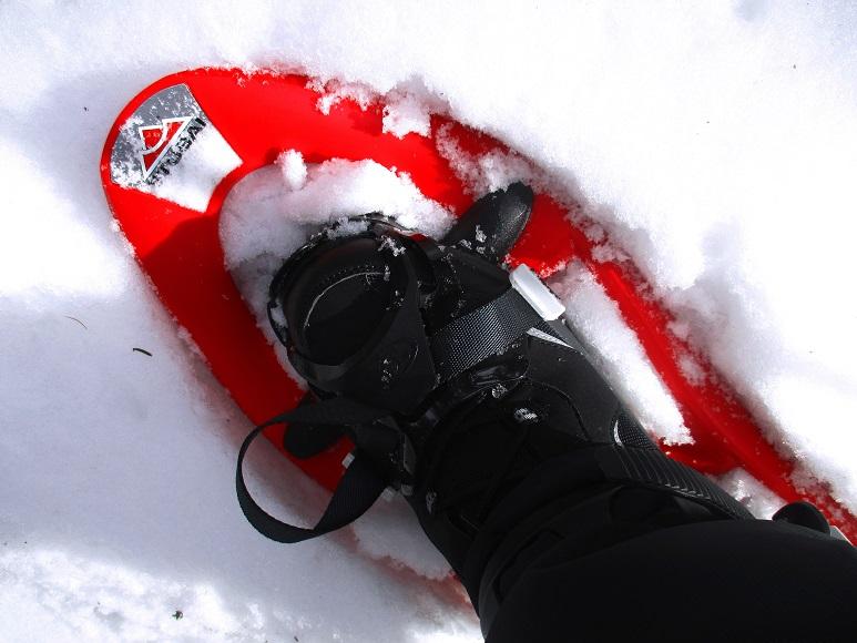 Foto: Andreas Koller / Schneeschuhtour / Hebalm - Klassiker Bärofen (1720m) / 19.02.2021 03:17:36