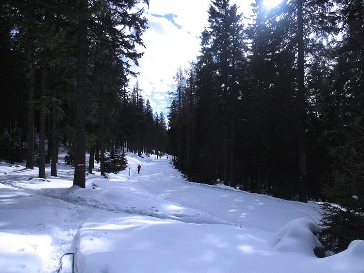 Foto: Andreas Koller / Schneeschuhtour / Hebalm - Klassiker Bärofen (1720m) / 19.02.2021 03:17:32