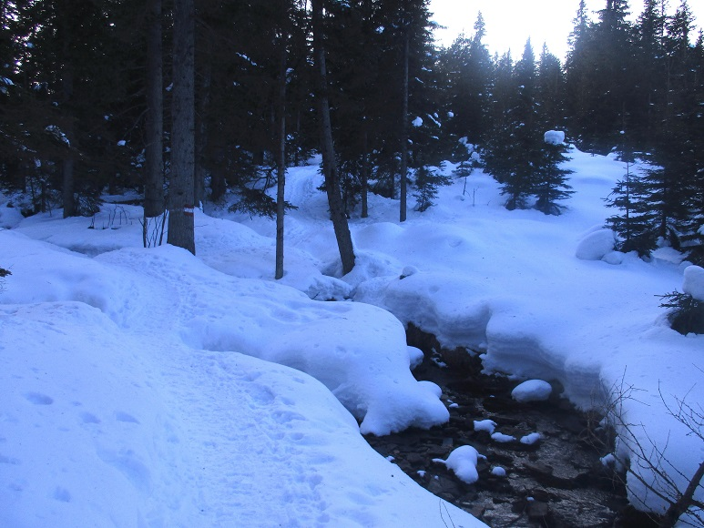 Foto: Andreas Koller / Schneeschuhtour / Hebalm - Klassiker Bärofen (1720m) / 19.02.2021 03:15:25