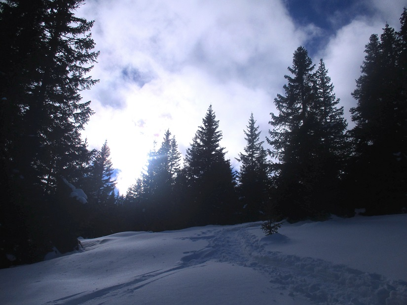 Foto: Andreas Koller / Schneeschuhtour / Hebalm - Klassiker Bärofen (1720m) / 19.02.2021 03:15:10