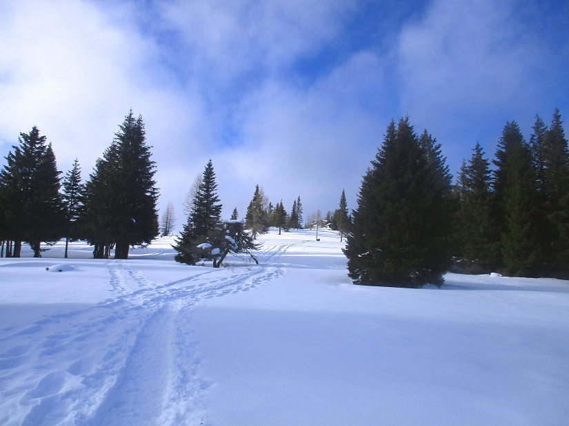 Foto: Andreas Koller / Schneeschuhtour / Hebalm - Klassiker Bärofen (1720m) / 19.02.2021 03:14:31