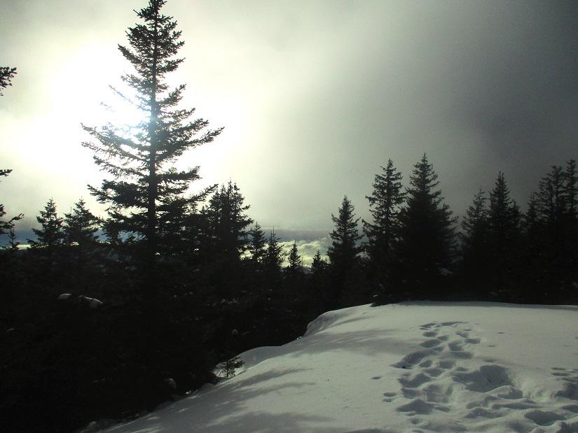 Foto: Andreas Koller / Schneeschuhtour / Hebalm - Klassiker Bärofen (1720m) / 19.02.2021 03:12:33