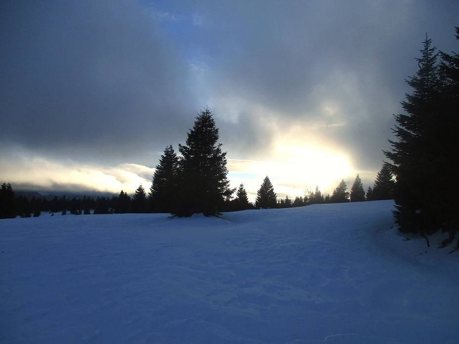 Foto: Andreas Koller / Schneeschuhtour / Hebalm - Klassiker Bärofen (1720m) / 19.02.2021 03:10:11