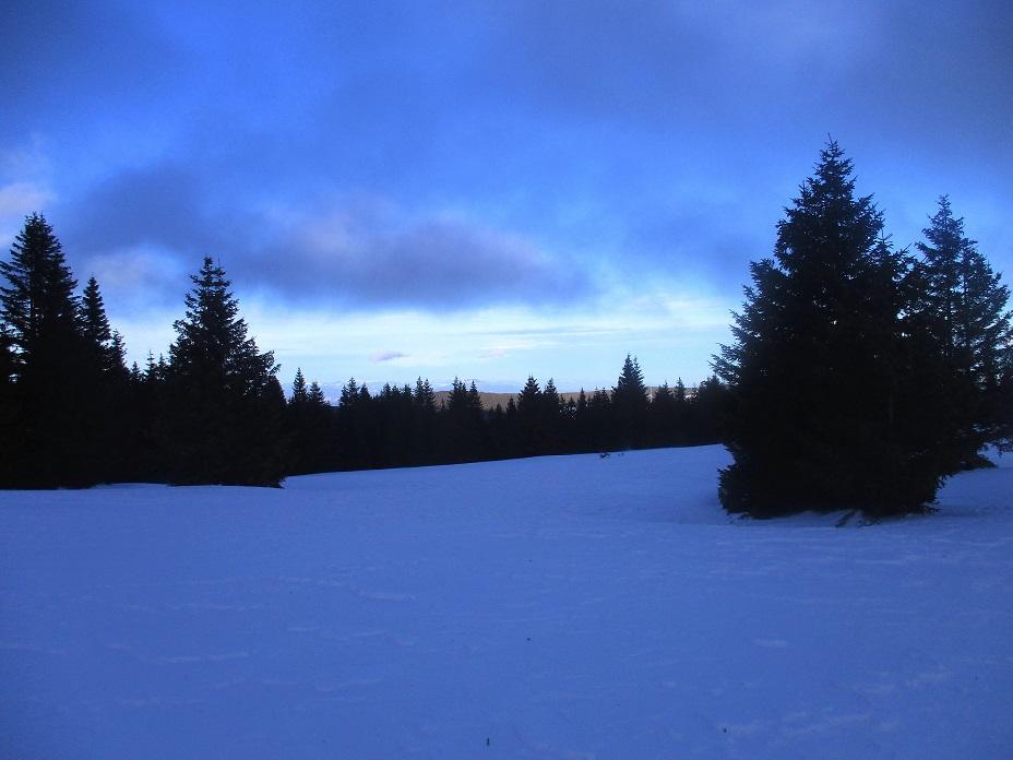 Foto: Andreas Koller / Schneeschuhtour / Hebalm - Klassiker Bärofen (1720m) / 19.02.2021 03:10:05