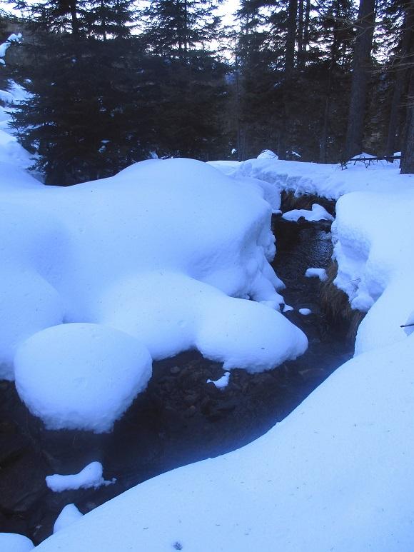 Foto: Andreas Koller / Schneeschuhtour / Hebalm - Klassiker Bärofen (1720m) / 19.02.2021 03:09:43