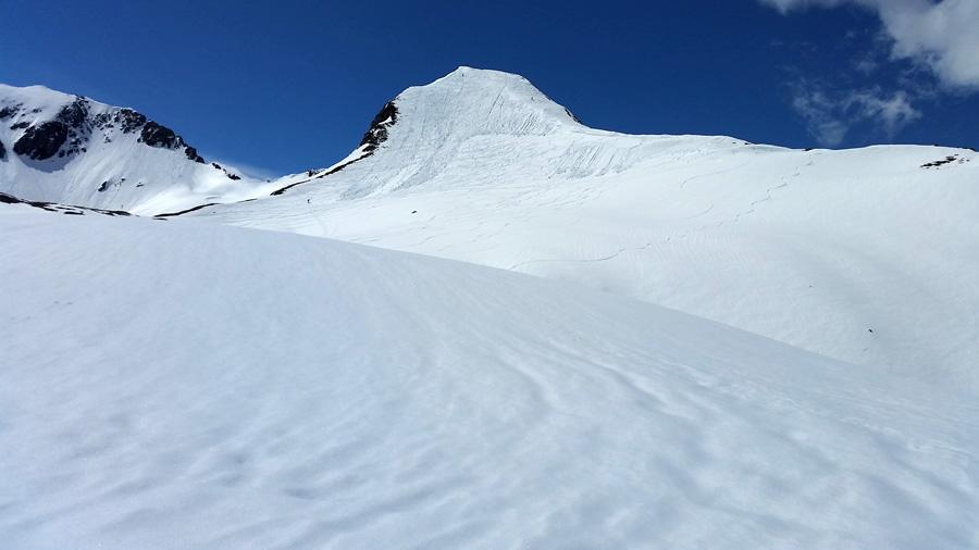 Foto: Rupert Gredler / Skitour / Schwarzkopf über den Nordrücken / Die mächtige Flanke des Schwarzkofes. / 21.02.2021 13:50:02