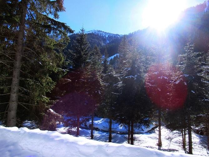 Foto: Andreas Koller / Skitour / Seitnerzinken Südroute (2164m) / 21.02.2021 00:58:28