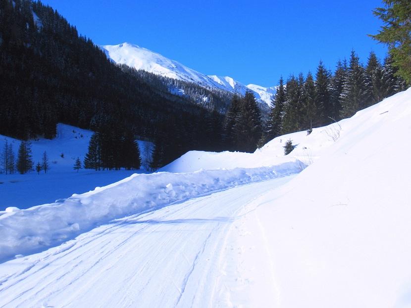 Foto: Andreas Koller / Skitour / Seitnerzinken Südroute (2164m) / 21.02.2021 00:58:22