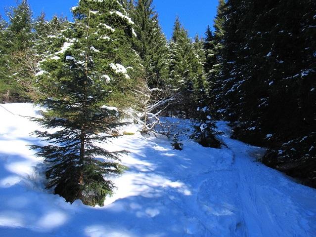 Foto: Andreas Koller / Skitour / Seitnerzinken Südroute (2164m) / 21.02.2021 00:58:02