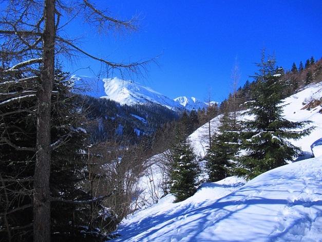 Foto: Andreas Koller / Skitour / Seitnerzinken Südroute (2164m) / 21.02.2021 00:57:53