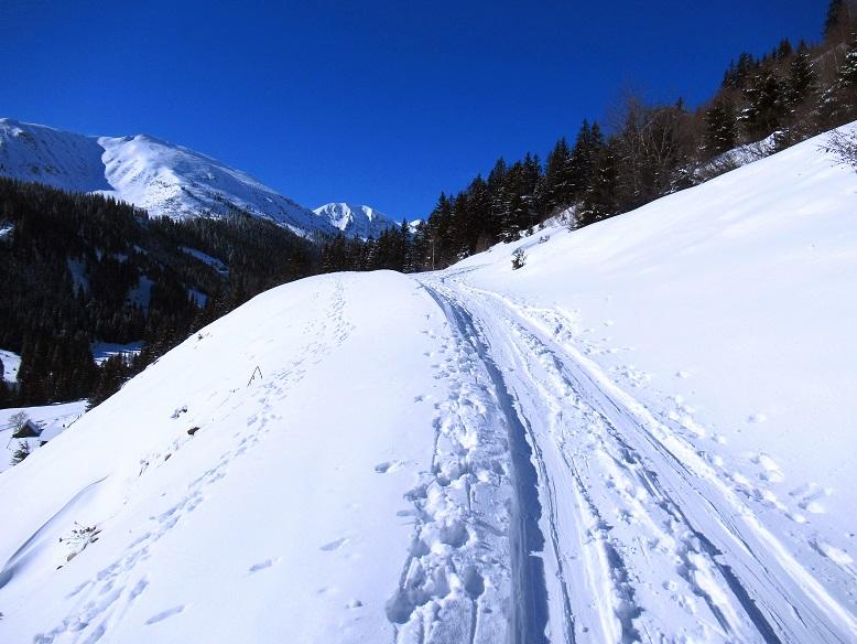 Foto: Andreas Koller / Skitour / Seitnerzinken Südroute (2164m) / 21.02.2021 00:57:48