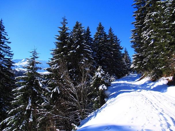 Foto: Andreas Koller / Skitour / Seitnerzinken Südroute (2164m) / 21.02.2021 00:57:42