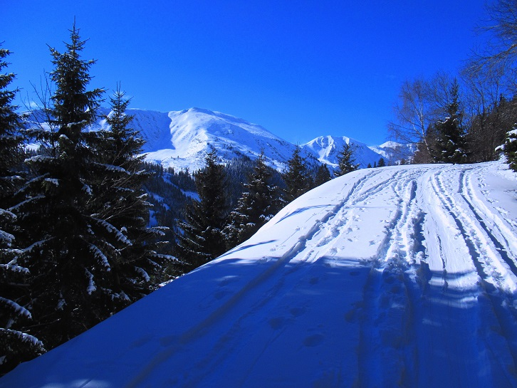 Foto: Andreas Koller / Skitour / Seitnerzinken Südroute (2164m) / 21.02.2021 00:57:30