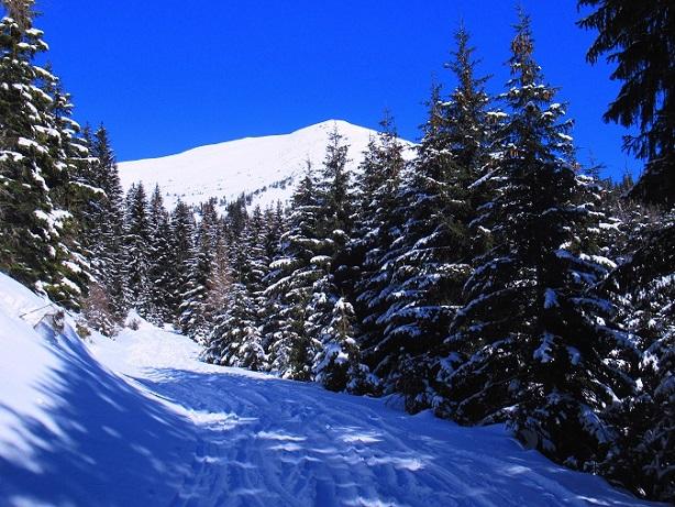 Foto: Andreas Koller / Skitour / Seitnerzinken Südroute (2164m) / 21.02.2021 00:57:24