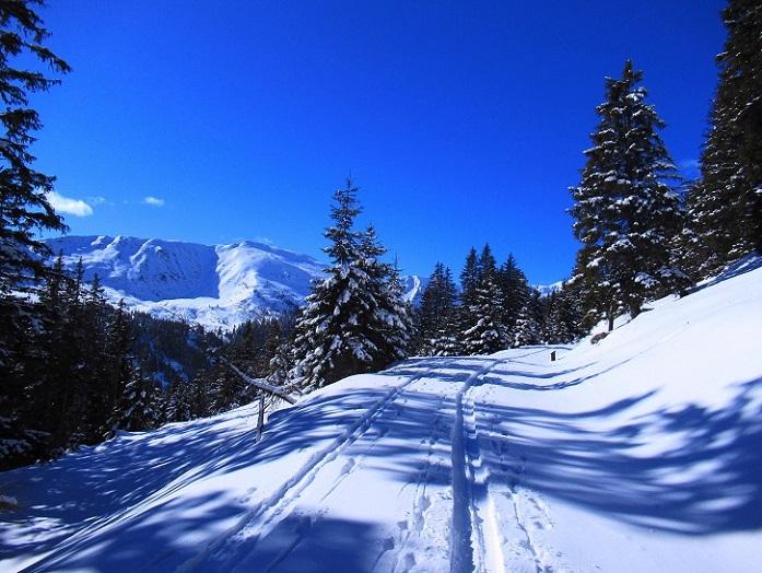 Foto: Andreas Koller / Skitour / Seitnerzinken Südroute (2164m) / 21.02.2021 00:57:18