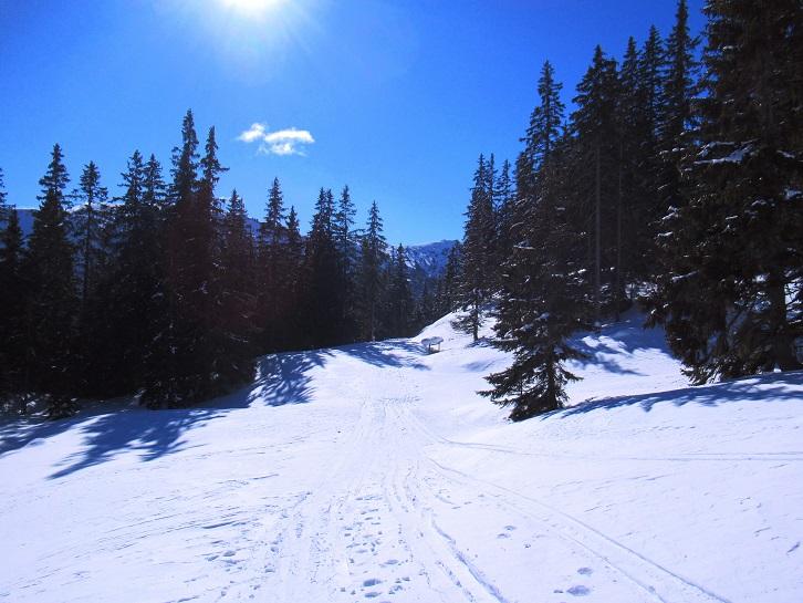 Foto: Andreas Koller / Skitour / Seitnerzinken Südroute (2164m) / 21.02.2021 00:57:04