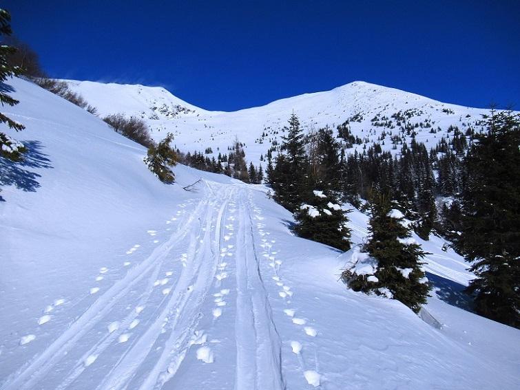 Foto: Andreas Koller / Skitour / Seitnerzinken Südroute (2164m) / 21.02.2021 00:56:39