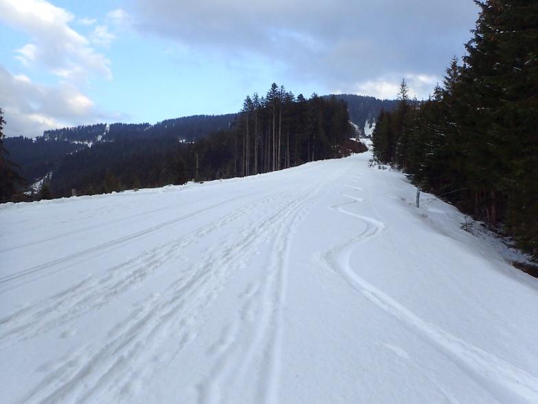 Foto: Manfred Karl / Skitour / Gabühel von Hintermoos / Dünne Pulverschneeauflage - ideal für die flache Piste / 22.03.2021 06:43:41