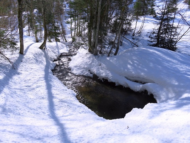 Foto: Andreas Koller / Skitour / Vom Pyhrnpass auf den Lahnerkogel (1854m) / 01.05.2021 18:24:03