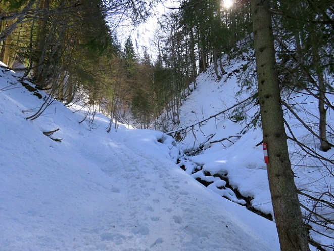 Foto: Andreas Koller / Skitour / Vom Pyhrnpass auf den Lahnerkogel (1854m) / 01.05.2021 18:23:48