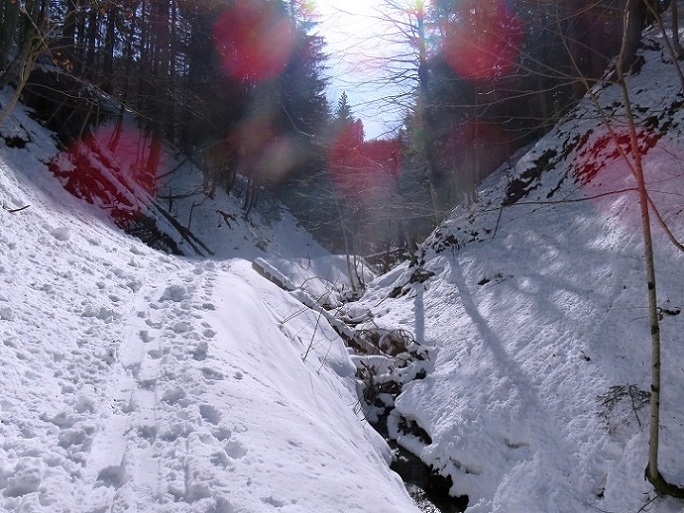 Foto: Andreas Koller / Skitour / Vom Pyhrnpass auf den Lahnerkogel (1854m) / 01.05.2021 18:23:41