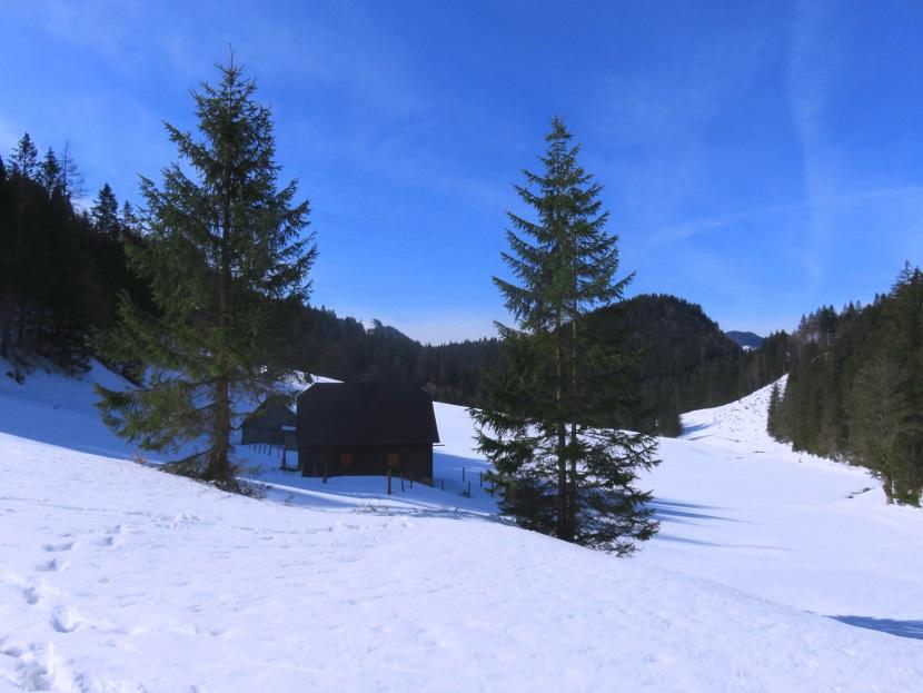 Foto: Andreas Koller / Skitour / Vom Pyhrnpass auf den Lahnerkogel (1854m) / Fuchsalm / 01.05.2021 18:23:09