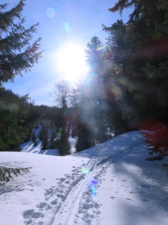 Foto: Andreas Koller / Skitour / Vom Pyhrnpass auf den Lahnerkogel (1854m) / 01.05.2021 18:22:58
