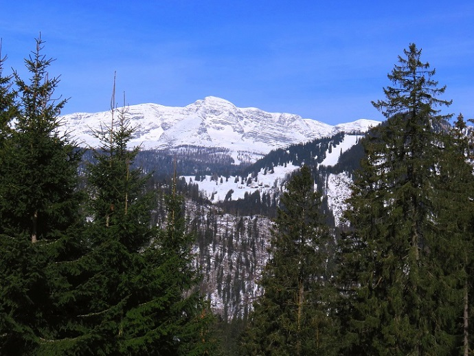 Foto: Andreas Koller / Skitour / Vom Pyhrnpass auf den Lahnerkogel (1854m) / Warscheneck (2387m) / 01.05.2021 18:22:52