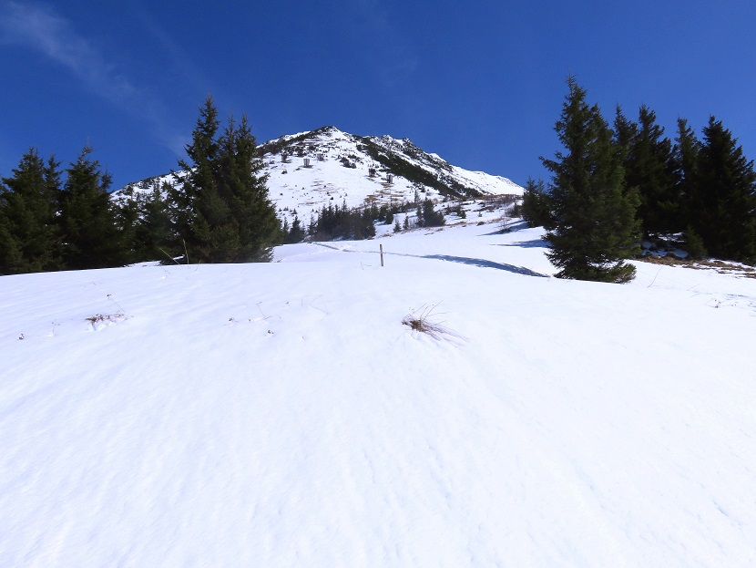 Foto: Andreas Koller / Skitour / Vom Pyhrnpass auf den Lahnerkogel (1854m) / 01.05.2021 18:21:30