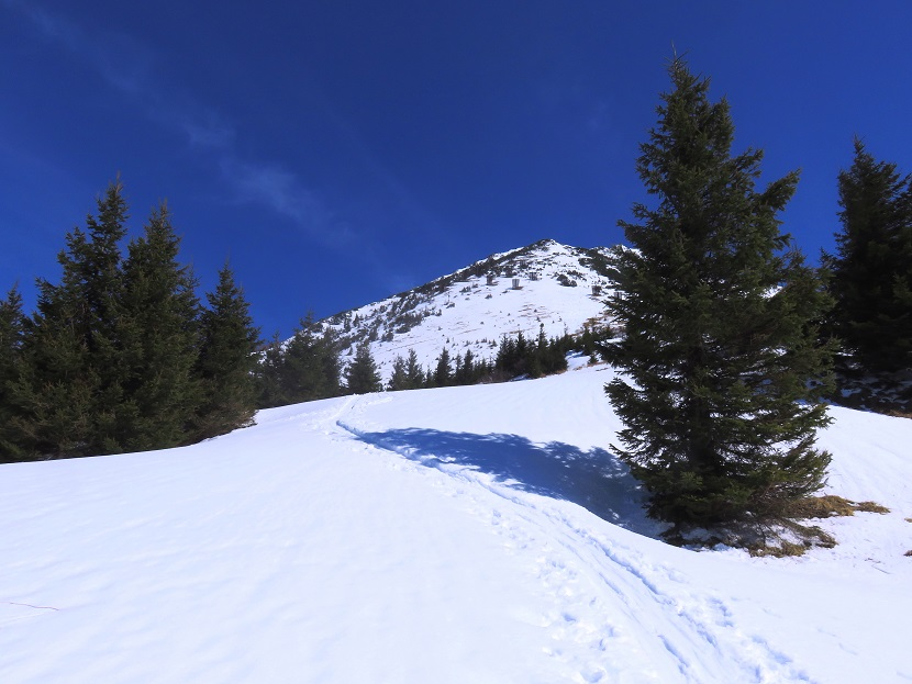 Foto: Andreas Koller / Skitour / Vom Pyhrnpass auf den Lahnerkogel (1854m) / 01.05.2021 18:21:17