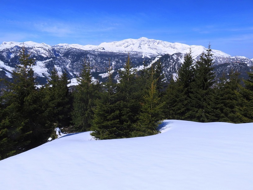 Foto: Andreas Koller / Skitour / Vom Pyhrnpass auf den Lahnerkogel (1854m) / 01.05.2021 18:21:10