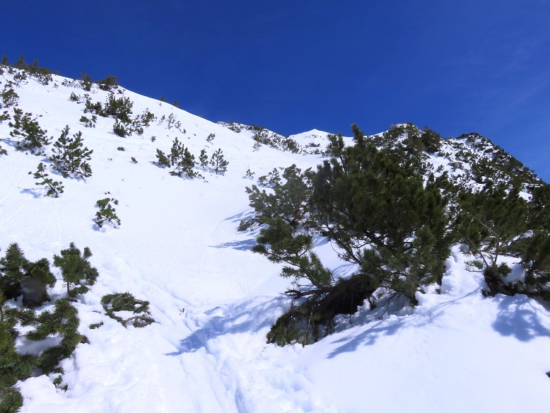 Foto: Andreas Koller / Skitour / Vom Pyhrnpass auf den Lahnerkogel (1854m) / 01.05.2021 18:19:32