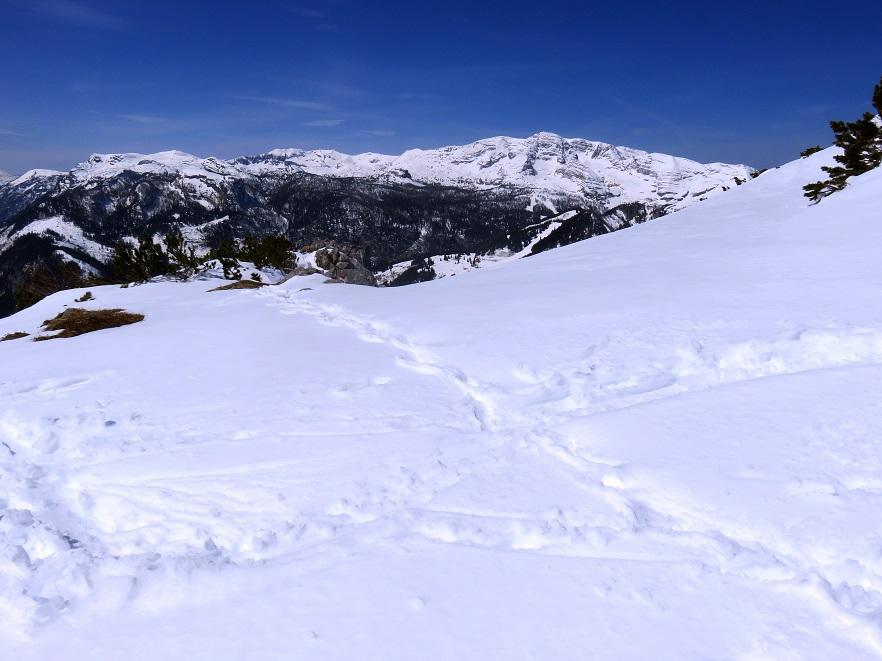 Foto: Andreas Koller / Skitour / Vom Pyhrnpass auf den Lahnerkogel (1854m) / 01.05.2021 18:18:40