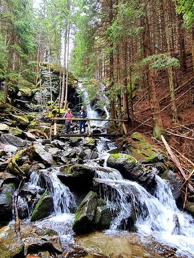 Foto: Wolfgang Dröthandl / Wandertour / Wildwasserpfad Mariensee - Runde / Erster Blick auf den Marienseer Wasserfall im Wechselgraben / 02.05.2021 19:15:59