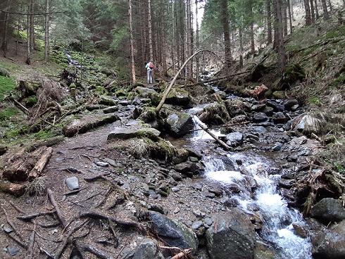 Foto: Wolfgang Dröthandl / Wandertour / Wildwasserpfad Mariensee - Runde / Über Stock und Stein weiter zur 'Himmelsleiter'... / 02.05.2021 19:13:50