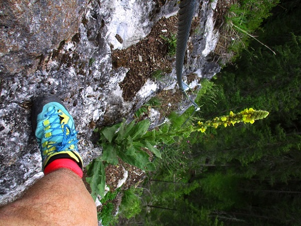 Foto: Andreas Koller / Klettersteigtour / Klettersteig Trafoi (1575m) / 02.05.2021 23:32:43